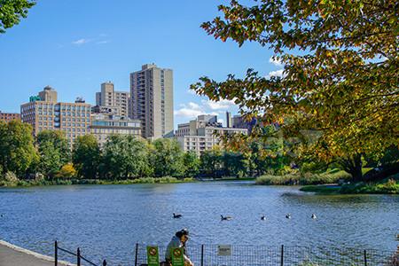 New York: dove i sogni diventano realtà