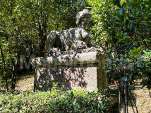 Bosco Sacro di Bomarzo: alla scoperta del più affascinante e stregato di tutti i parchi